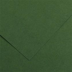 PR HARTIE SCHITA COLOR Canson Colorline 50x70 220gr VERDE COPAC