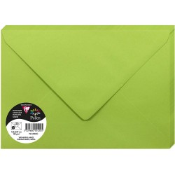 PLIC CLAIREFONTAINE C5 20/SET VERDE INTENS 5542C