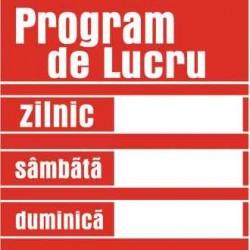 TEM INDICATOR PROTECTIE-PROGRAM DE LUCRU 803205