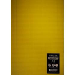 PA CAIET A4 60F AR COPERTA PLASTIC 24000270