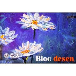 PA BLOC DESEN A3 12F 300g/mp 24000349