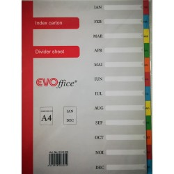 GOL SEPARATOARE INDEX CARTON EVOFFICE IAN-DEC A4 EV4H09