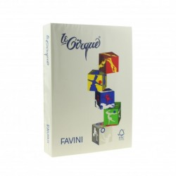 CARTON COLOR A4 160GR 250/SET FAVINI GREY