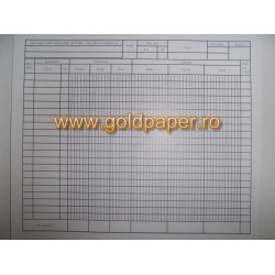 GOL FISA CONT ANALITIC VALORI MATERIALE