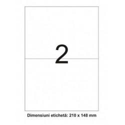 ETICHETE AUTOADEZIVE 2/A4 ORIZONTAL 100/SET