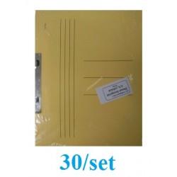 DOSAR INCOPCIAT CARTON 1/1 GOLD 30/SET GALBEN PASTEL