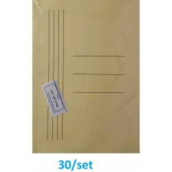 DOSAR PLIC CARTON GOLD 30/SET PORTOCALIU