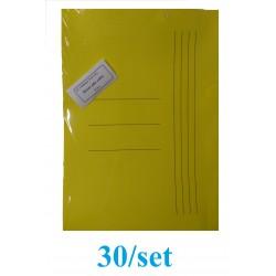 DOSAR PLIC CARTON GOLD 30/SET GALBEN INTENS