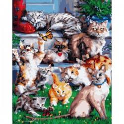 Pr Set Pictura Pe Numere Gx33767 Domestic Cat