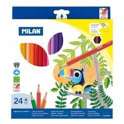ADA CREIOANE COLOR MILAN 24/SET 80024