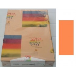 HARTIE COLORATA A4 MARO ALUNA 250 COLI/TOP 160 GR/M2 COLOR PLUS