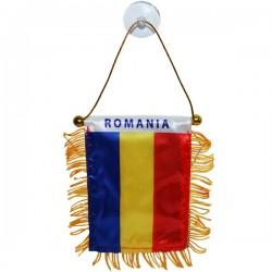 RO STEAG PENTRU MASINA CU VENTUZA 8*12CM ROMANIA 25262