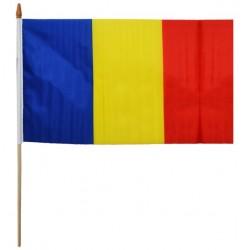 RO STEAG PANZA 30*45CM ROMANIA 25263